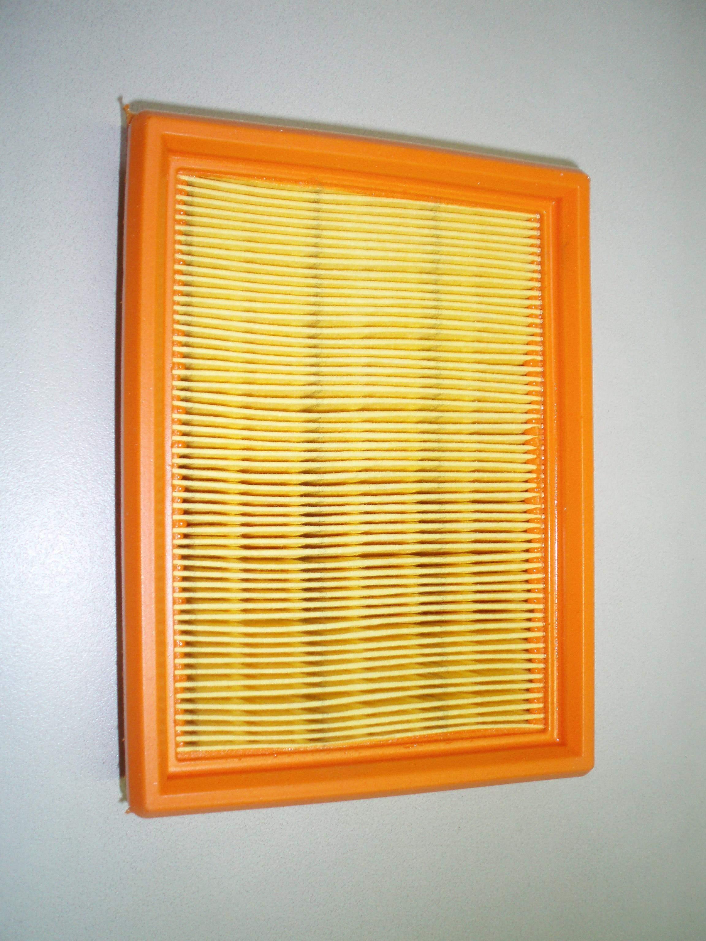 Cartouche filtre à air d'origine, de marque LOMBARDINI